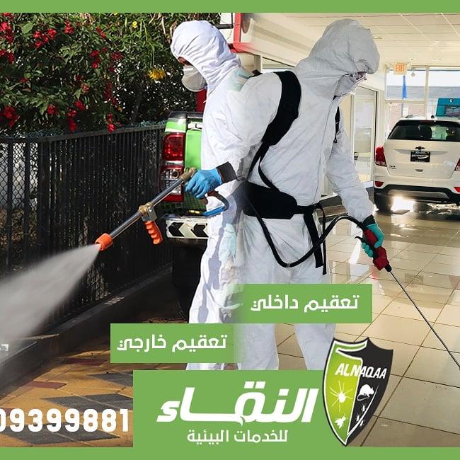 مكافحة حشرات راس الخيمة , مكافحة حشره الرمة , مكافحة حشرات النقاء , 0509399881 P_1779925178